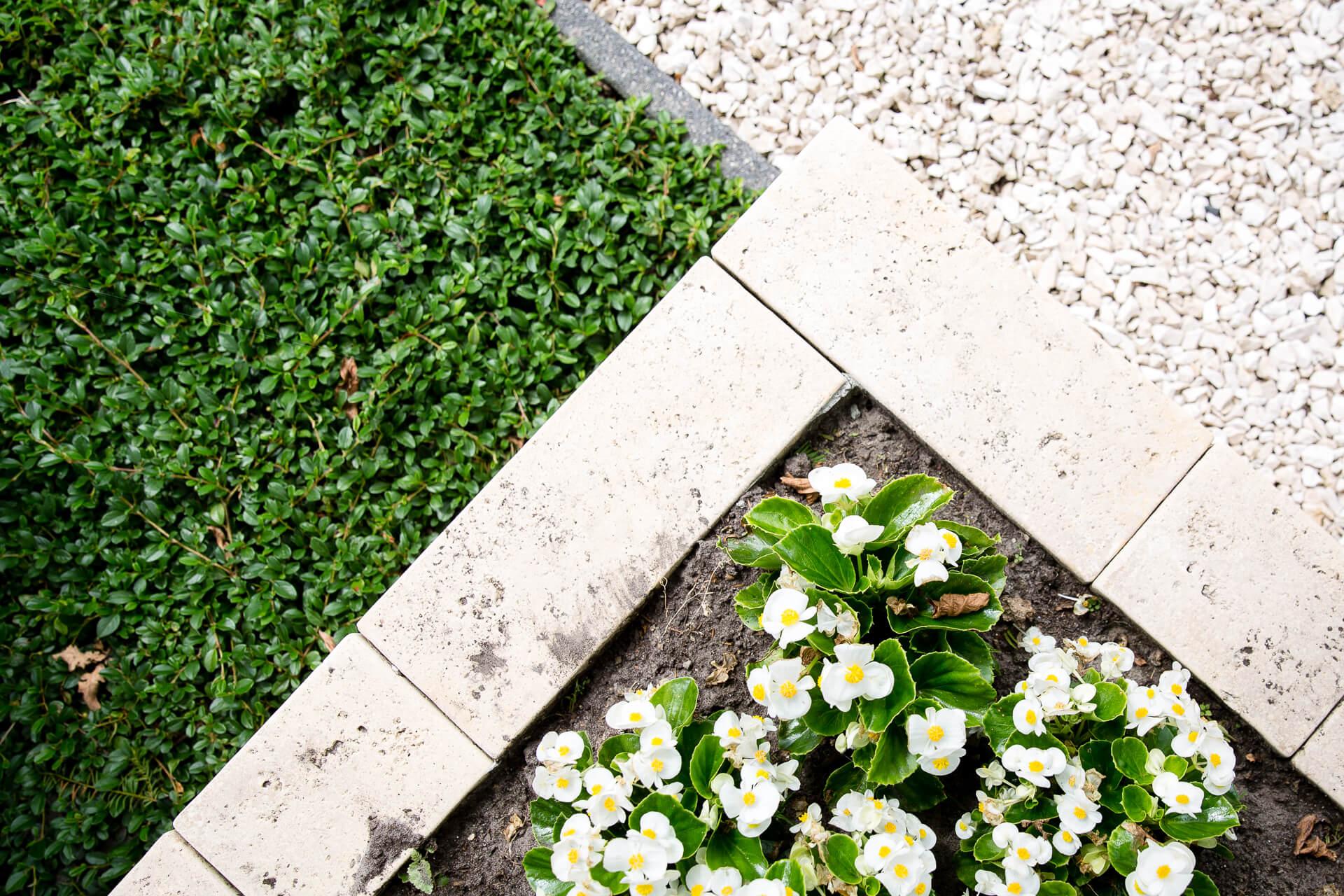 Tuintips voor het voorjaar